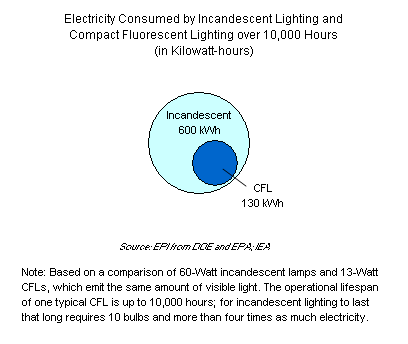 Electricity Consumed by Incandescent Lighting and Compact Fluorescent Lighting over 10,000 Hours (in Kilowatt-hours)